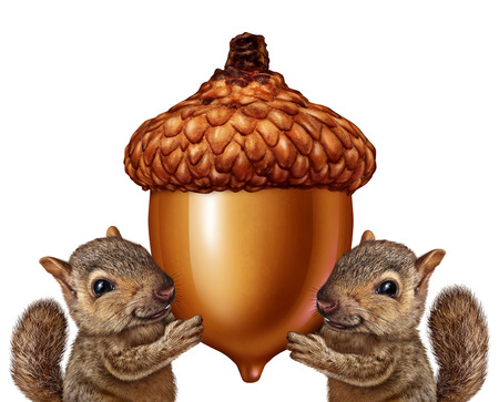 Squirrels holding an acorn as friendly teamwork of cute furry rodent characters gripping a giant nut signage for advertising and marketing as a message from animal wildlife or as a symbol of savings and financial investment of assets