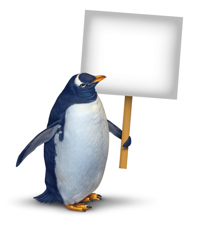 spaying: Penguin holding a blank card sign as a cute polar bird with a smiling happy expression supporting and communicating a message pertaining to animal welfare and wildlife on an isolated white background  Stock Photo