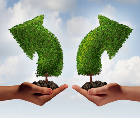 Growth choice and business guidance concept as two human hands holding up trees shaped as an arrow growing in opposite directions as a crossroad metaphor for choosing the right option for career or financial success  photo