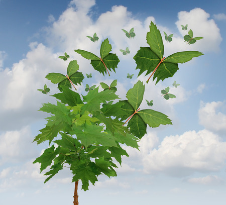 Nature freedom symbol as a growing tree with green leaves transforming into flying butterfly shapes as a metaphor for business exports and distribution or hope in the future for sustainable development of the environment  photo