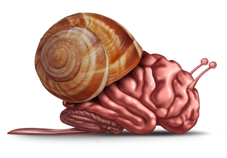 Thinking slow and brain function problems concept as a human organ in a snail shell as a mental health symbol for struggling with memory and  dementia as alzheimer or neurology challenges