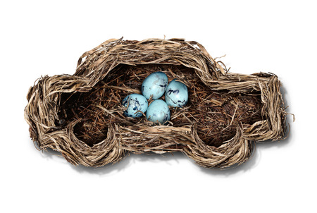 Car safety and auto insurance concept as a nest shaped as an automobile protecting a family of bird eggs as a concept and symbol for transportation security and driving safely on a white background  Stock Photo