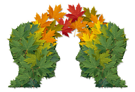 Communication exchange business partnership and teamwork symbol as two human heads made of tree leaves connected together as a symbol of network relationships  and nature cooperation