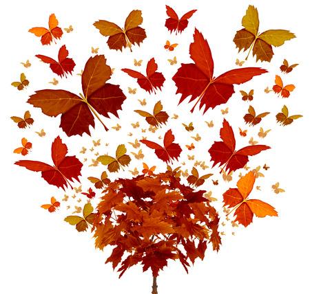 mariposa: Concepto de �rbol de oto�o con las hojas de temporada naranja y amarillo m�gicas que vuelan en el viento Foto de archivo