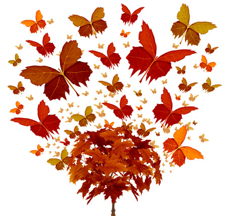 Autumn tree concept with magical orange and yellow seasonal leaves flying in the wind