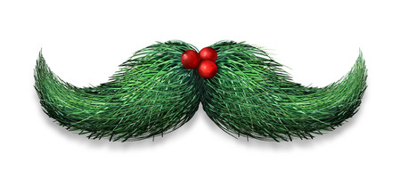 decoration: Winter mustache concept decoration made of pine needles and holly berries on a white background as a Christmas or new year symbol for holiday fun and humour.