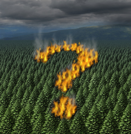 environmental issues: Forest fire concept as a raging wildfire burning through a forest of pine trees shaped as a question mark as a symbol for safety information and safety issues during a dry heat weather period causing an environmental disaster.