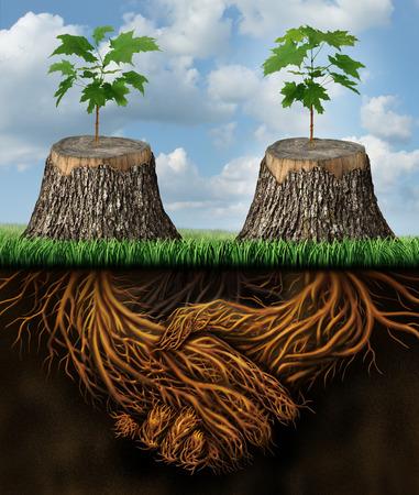 Elkaar helpen als een wederzijds voordeel zakelijke steungroep concept twee gehakte bomen met nieuwe groei van hoop in opkomst als teamwork met de wortels in de vorm van een handdruk die de kracht voor succes.