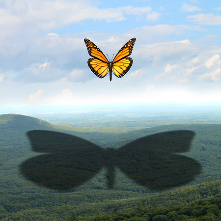 Make your mark and leave a big impression concept as a small butterfly in the sky casting a giant shadow over a vast landscape as a communication and marketing symbol for future success in business and life through education and strategic vision. Stock Photo