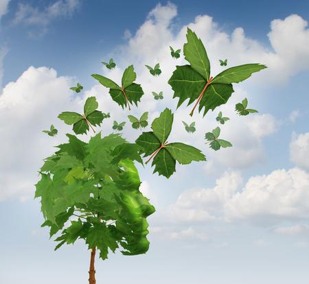 Creatieve communicatie en intelligente marketing concept als een boom in de vorm van een menselijk hoofd met vliegende bladeren veranderen in magische blad vlinders verspreiden van de boodschap en het delen van de innovatieve ideeën en verbeelding. Stockfoto