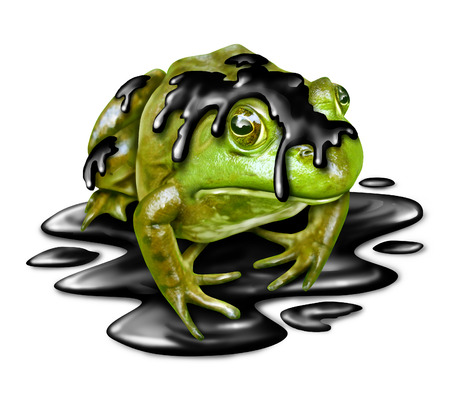 symbol victim: Oil disaster victim concept as a dirty green frog with black crude petroleum liquid dripping from its amphibian skin as a symbol for the dangers of toxic waste in a sensitive habitat and environmental hazards from industry.