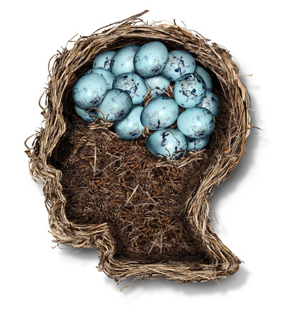 fragility: Protecting the brain mental health concept as a bird nest shaped as a human head and face with a group of eggs in the shape of the thinking organ as a medical metaphor for the fragility of neurology and intelligence.