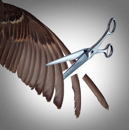 Losing freedom concept as a restriction metaphor to clip the wings of somebody.