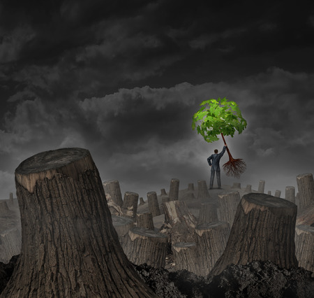 Disaster plan concept as a person standing on a hill in a dead forest with cut trees holding up a healthy young green sapling as a symbol of confidence in economic recovery and faith in vision for future growth success.