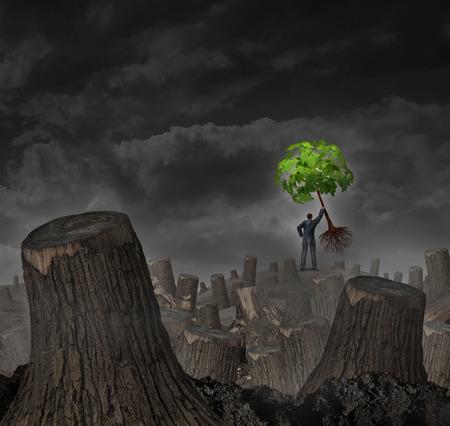 Ramp planconcept als een persoon die op een heuvel in een bos dood met gesneden bomen houden van een gezonde jonge groene boompje als een symbool van het vertrouwen in het economisch herstel en het geloof in de visie voor de toekomstige groei van het succes. Stockfoto