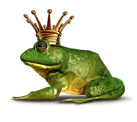 Frog prince side view concept with gold crown representing the fairy tale symbol of change and transformation from an amphibian to royalty. Standard-Bild