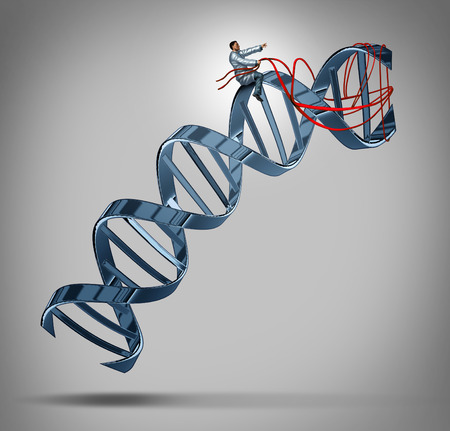 Genetic engineering and gene modification medical science concept as a doctor or researcher scientist guiding a DNA strand using a harness as a symbol