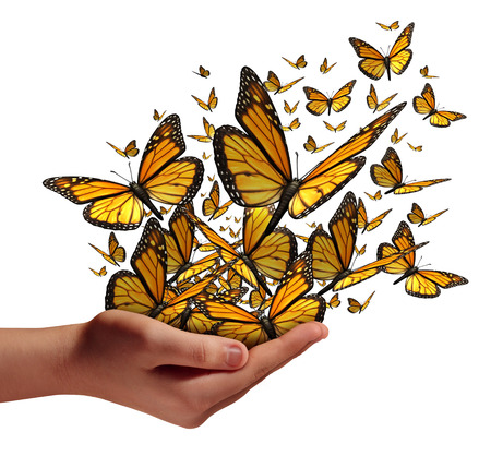 freiheit: Hoffnung und Freiheit Konzept als eine menschliche Hand die Freigabe einer Gruppe von Schmetterlingen als Symbol für educationcommunication und Verbreitung von Ideen mit Social-Marketing auf einem weißen Hintergrund.