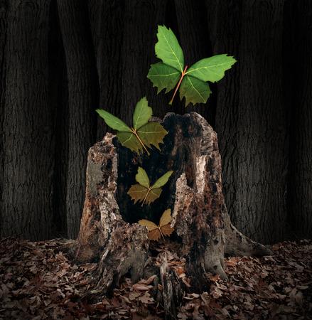 Posmrtný život a znovuzrození koncept jako skupina listů ve tvaru létajících motýlů stoupající z mrtvého rozpadající se pařezu jako symbol duše opouští tělo na narození nového života po smrti, s nadějí do budoucna.