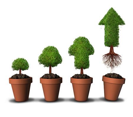 gradual: Invertir el dinero y el �xito financiero del concepto del crecimiento como un grupo de macetas como los �rboles que crecen en forma gradual con una como una flecha de despegar hacia arriba libre de las limitaciones de su casa como un s�mbolo para la inversi�n econ�mica �rbol maduro.
