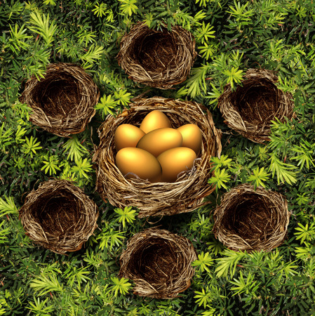 amalgamate: Group savings and retirement plan concept as a group of small bird nests connected to a large nest with gold eggs as  a financial symbol for community and team investment strategy pooling funds for higher yields. Stock Photo