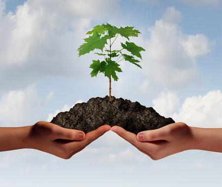 두 손으로 나무 그레이 growng와 땅의 힙을 들고와 같은 협력 성장 비즈니스 기호.