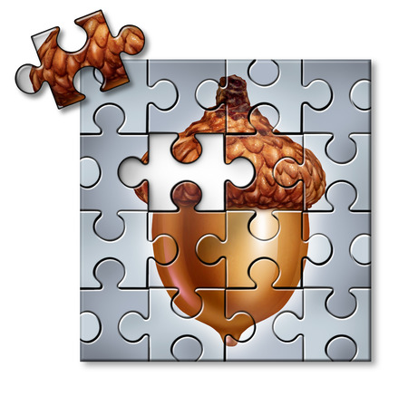 savings problems: Investing puzzle concept as an acorn with a missing piece as a financial metaphor for savings and tax and wealth management symbol on a white background.