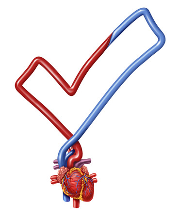 human vein heartbeat: Heart check medical health care symbol as a  human heart shaped as a check mark as a symbol of a doctor examination test.