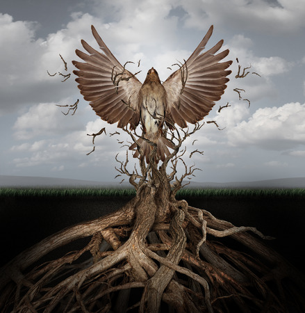 surreal: New life breaking free as a concept for freedom and power as the rise of the phoenix to be reborn and overcome challenges rising from entangled tree roots as a success symbol of hope.