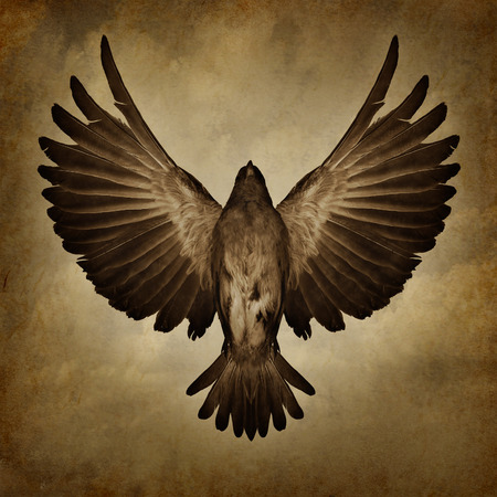 breaking off: Wings of freedom on a grunge texture background as a breaking free and spirituality faith symbol as a bird with open spread feathers flying upward to success.