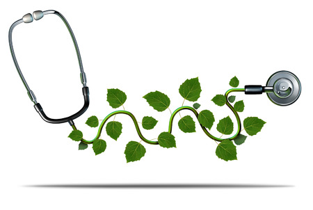 Natural medicine and alternative therapy concept as a doctor stethoscope with plant leaves growing on the medical equipment as a symbol for green health.