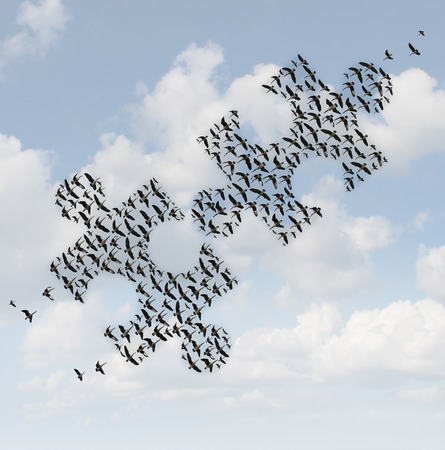 group strategy: Flying birds puzzle as a business concept for group strategy as two flocks of geese shaped as jigsaw puzzle pieces comming together as a teamwork success metaphor.