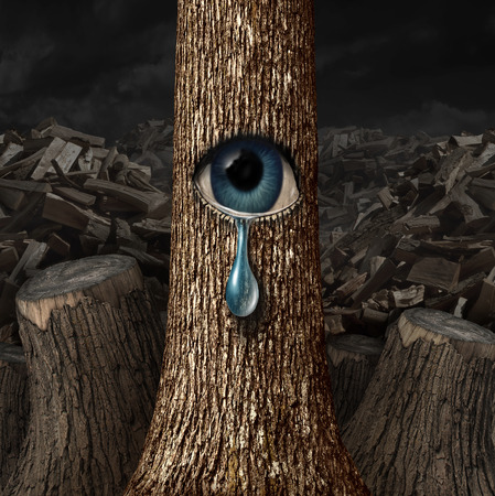 Moeder natuur huilen begrip als een achtergrond van hout gehakt en gesneden stammen met één overlevende boom met een open oog huilen een traan als een metafoor voor mislukte conservering. Stockfoto