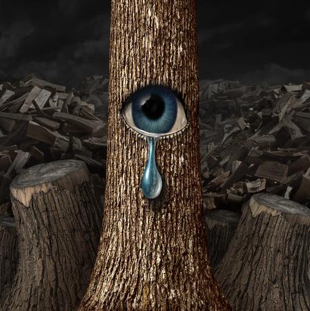 Mutter Natur weint Konzept als Hintergrund Holz gehackt und geschnitten Stämme mit einem überlebenden Baum mit einem offenen Auge weint eine Tropfenform als Metapher für gescheitert Schutz.