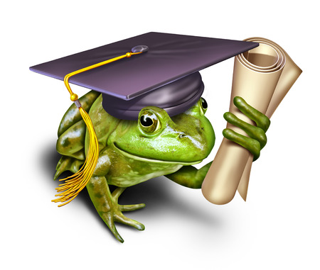 mortar cap: Environmental education symbol as a green frog student wearing a graduation mortar cap holding a university or school diploma as a metaphor for learning conservation and respect for nature.