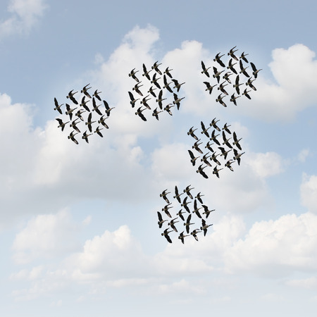 common vision: Mobile network and communication concept as groups of organized teams of flying geese flock moving together as a business metaphor for teamwork management.