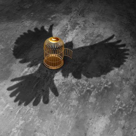 bird shadow: Cage freedom concept as an open birdcage with a giant bird cast shadow flying above with open wings as a symbol of liberty and justice. Stock Photo