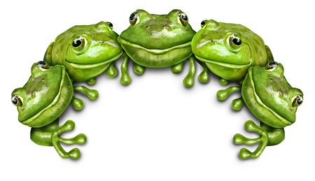 anthropomorphism: Frog group sign as a team of happy fun green amphibians sitting on the top of a white blank card background representing an advertisement concept promoted by wildlife.