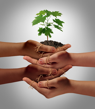 growing business: Community cooperation concept and social crowdfunding investment symbol as a group of diverse hands nurturing a sapling tree with roots wrapped and connecting the people together.