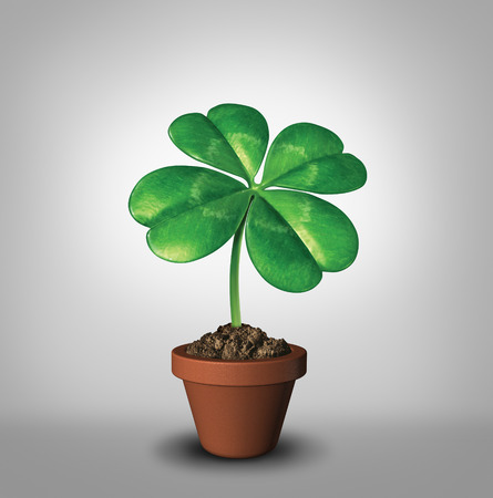 plant pot: Growing your luck as a four leaf clover plant in a flower pot as a symbol for success and prosperity as a green lucky charm icon of good luck and fortune for opportunity and healthy growth. Stock Photo
