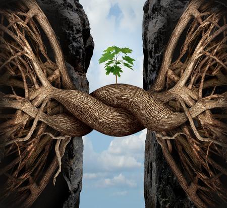 Unity Wachstumskonzept und die Lücke Geschäfts Symbol als zwei Baumwurzeln auf einem hohen steilen Felsen verbindet und miteinander verschmelzen Überbrückung zusammen, um ein neues Bäumchen als Symbol der Partnerschaft Erfolg und die Stärke zu bilden.