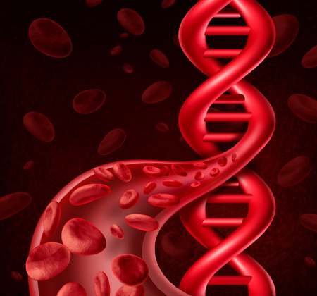 sequencing: DNA blood cell concept as human viens and arteries shaped as a double helix symbol for genetic information or biological engineering. Stock Photo