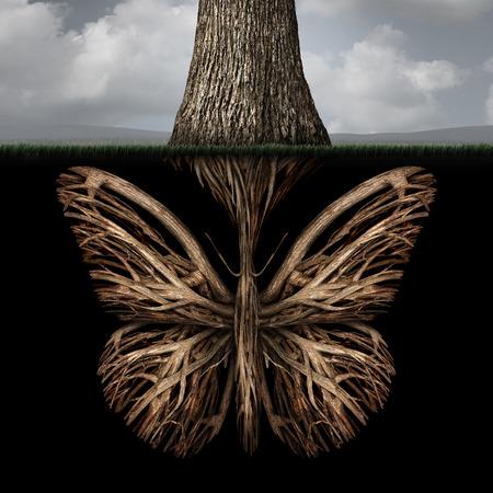 planta con raiz: Concepto creativo ra�ces como un �rbol con una forma como una mariposa como una poderosa met�fora del medio ambiente o el s�mbolo de pensamientos y s�lida base creatividad ra�z. Foto de archivo
