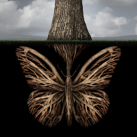 powerful creativity: Creative roots concept as a tree with a root shaped as a butterfly as a powerful environmental metaphor or symbol for inner thoughts and strong creativity foundation. Stock Photo