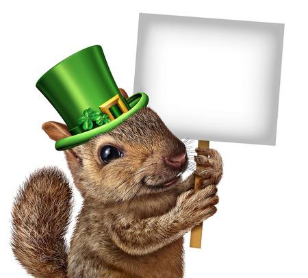 seasonal symbol: Primavera signo ardilla concepto fauna feliz lindo que lleva un sombrero de los patricks del santo d�a verde afortunado con tr�boles de cuatro hojas que sostiene un letrero en blanco o cartel como s�mbolo de temporada festiva de las vacaciones.