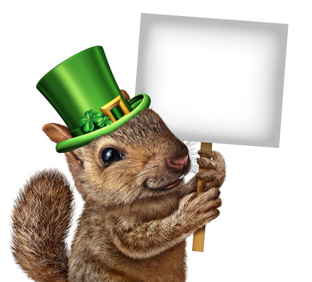 a public notice: Spring squirrel sign concept as cute happy wildlife wearing a lucky green saint patricks day hat with four leaf clovers holding a blank signboard or placard as a festive holiday seasonal symbol. Stock Photo
