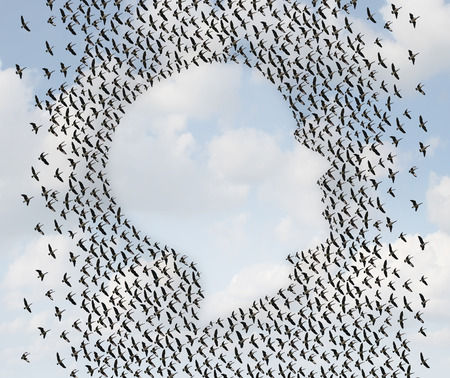 human rights: Human freedom and emigration concept as a group of flying geese as an organized flock of birds in the shape of a head or face profile as a symol for liberty and independence or vacation travel.