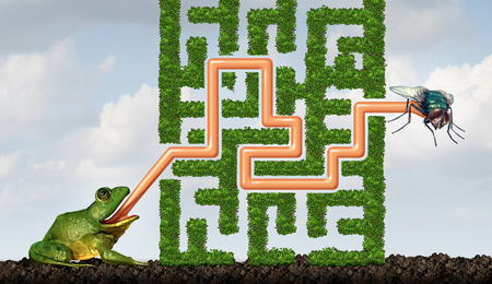 challenge: Adapting to challenges being flexible concept as a green frog with a tongue solving a maze made of plants to catch a fly as a solution metaphor for adaptive success through learning and skill.