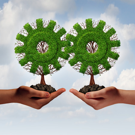 growing partnership: Team business strategy concept as two hands holding connected trees shaped as a gear or cog as a growing financial partnership united together for corporate growth and teamwork.