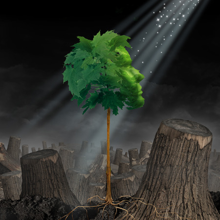 Renewal and hope Life and recovery concept as a green leaf tree shaped as a human head growing out of landscape of chopped forest as survival symbol for rebirth and creating a new you after an addiction or crisis.